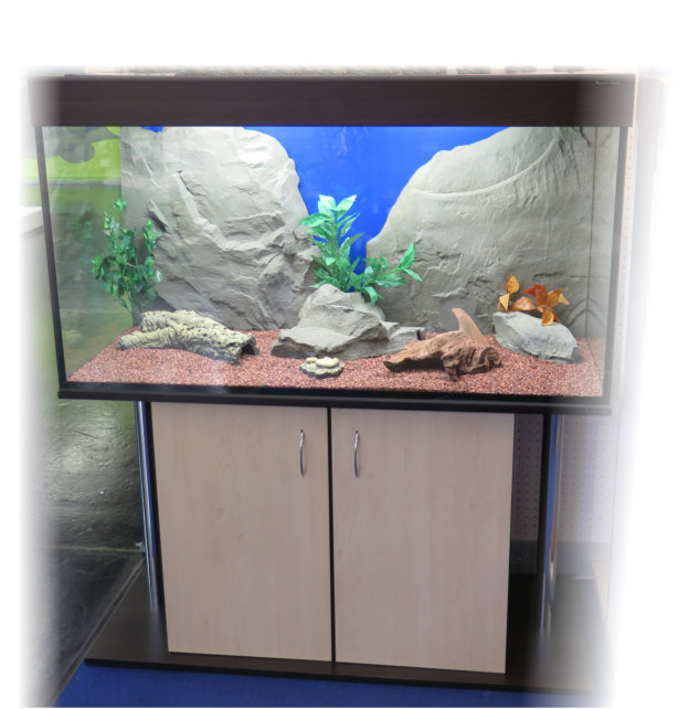 aquarien zubehr latest aquarium l mit fischen und zubehr. Black Bedroom Furniture Sets. Home Design Ideas